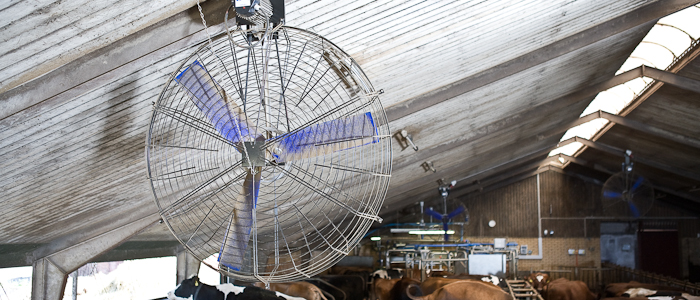 системы вентиляции для сельского хозяйства